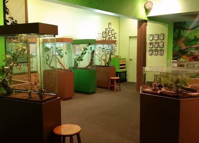 Zoológico de Insetos em Victoria