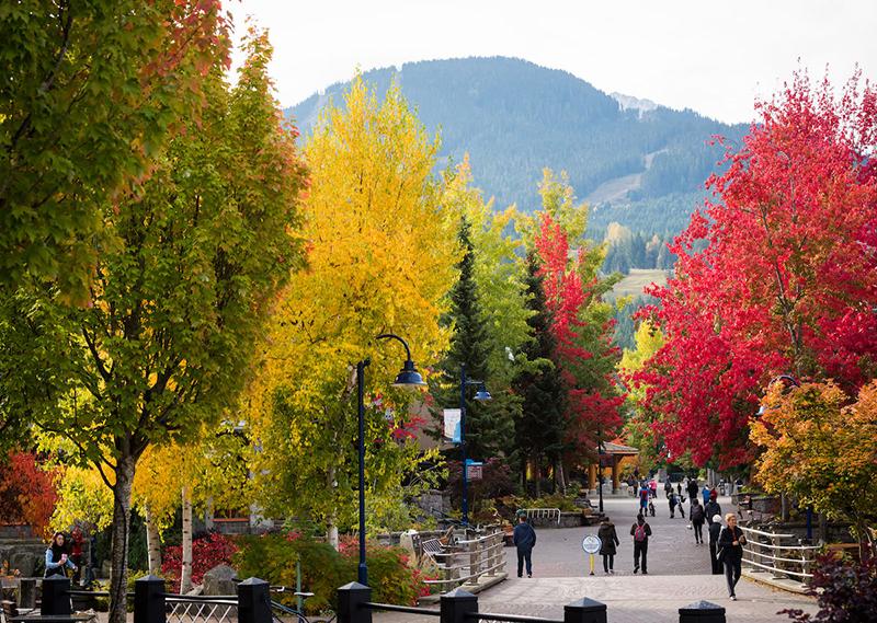 Paisagem de outono em Whistler