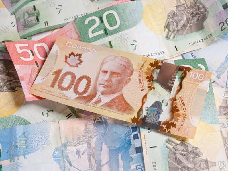 Dinheiro em espécie - Dólar Canadense