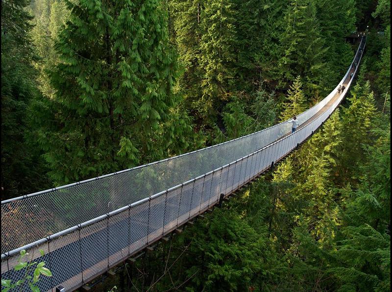 Excursão na Ponte Capilano em Vancouver