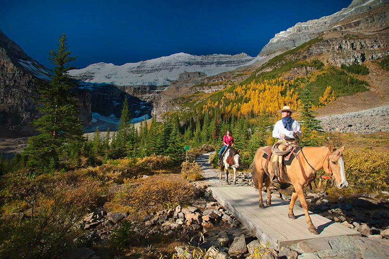 Passeio a Cavalo no Parque Nacional em Banff